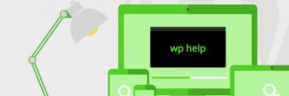 Cara Install dan Menggunakan WP-CLI untuk Mengatur Blog WordPress