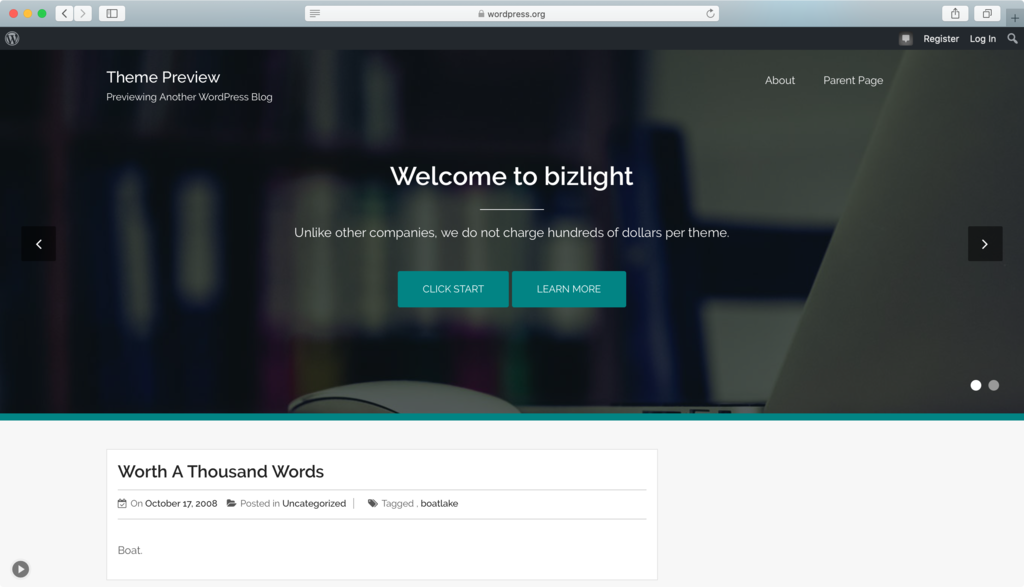 tema terbaik wordpress bizlight