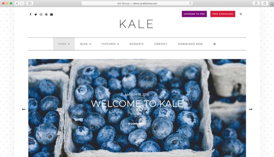 tema wordpress terbaik kale