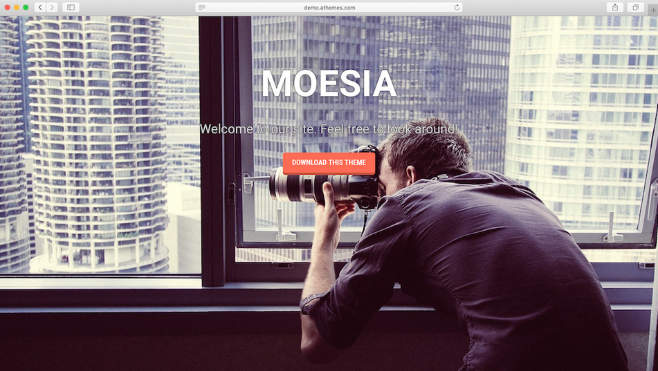 tema wordpress moesia