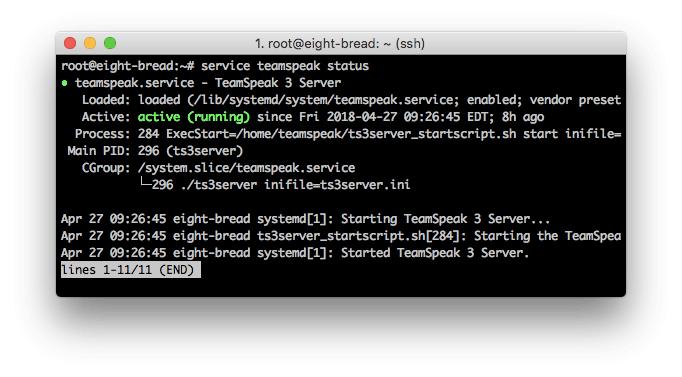 Informasi status server TeamSpeak 3