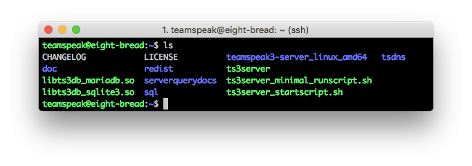 Konten server TeamSpeak 3