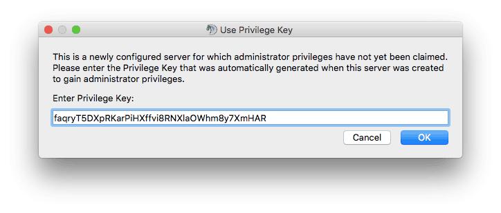 Memasukkan privileged key untuk server TeamSpeak 3