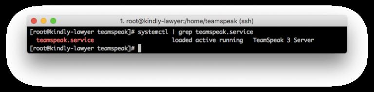 Mengecek apakah server TS3 telah berhasil dijalankan di boot atau belum