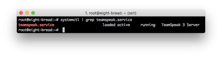 Server TeamSpeak berhasil dijalankan