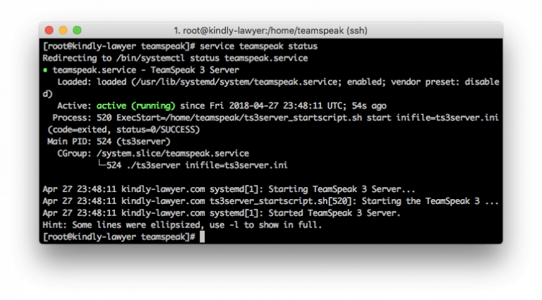 Report status server TeamSpeak 3