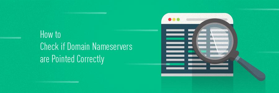 Cara cek Status Domain Nameserver: Apakah Status Pointing Sudah Benar?