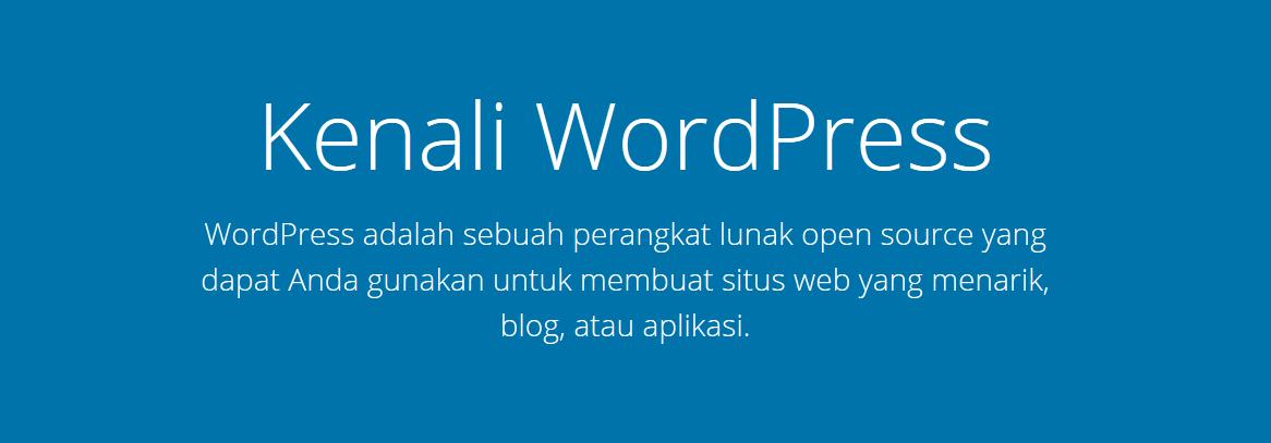 banner website wordpress