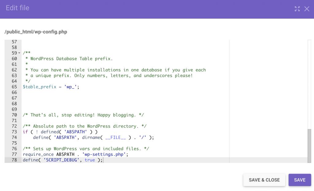 Script debug constant